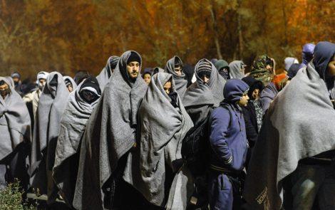 Refugee crisis report presented