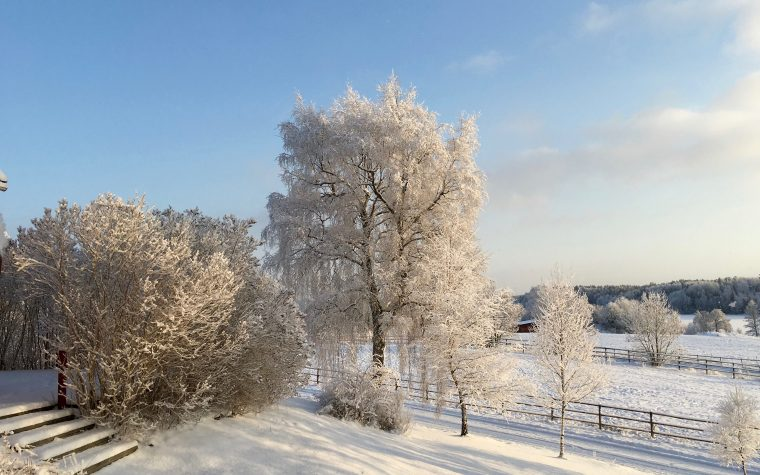 Snow in Sweden
